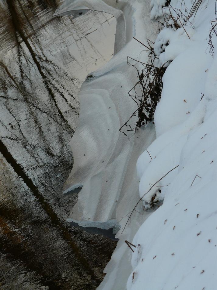 Schneebruchkanten 2